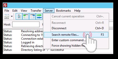 Search remote files