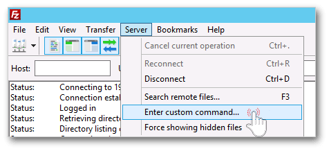 Field for Enter raw FTP command