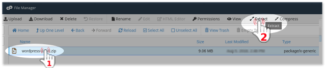 Extract file with cPanel file manager on NextPointHost account